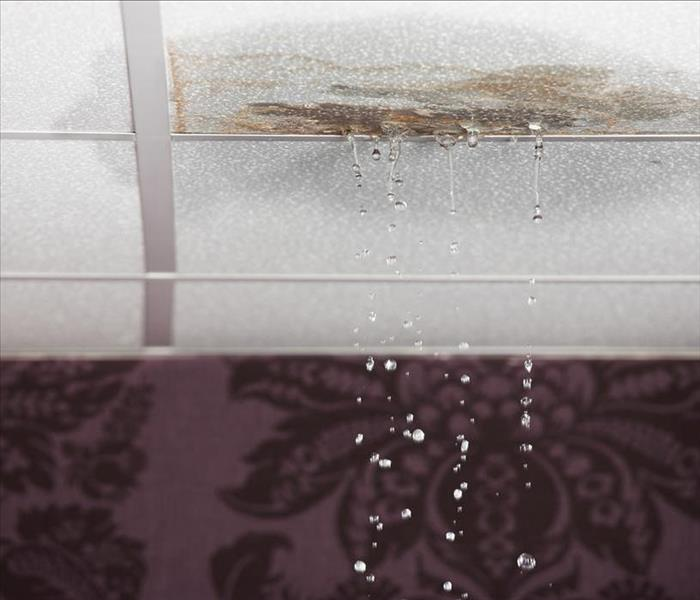 Water Damage Effects of Water Damage in an Alpharetta Property