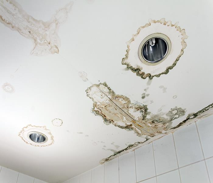 Water Damage Water Removal -  For More Than Just Flooding