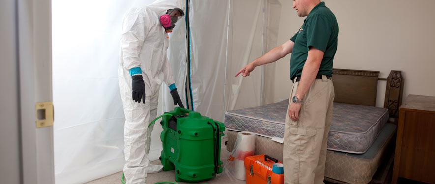 Sandy Springs, GA mold removal process